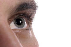 Menselijk oog Stock Afbeeldingen