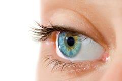 Menselijk oog Stock Afbeelding