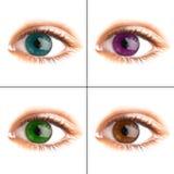 Menselijk oog. het macro ontspruiten royalty-vrije stock afbeeldingen