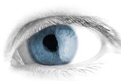 Menselijk oog. macro royalty-vrije stock afbeeldingen