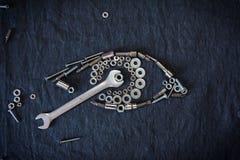 Menselijk oog van de noten en de hulpmiddelen Stock Foto's