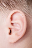 Menselijk oor Royalty-vrije Stock Foto's