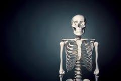 Menselijk skeletlichaam op een grijze achtergrond royalty-vrije stock fotografie