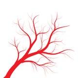 Menselijke aders, rood bloedvatenontwerp op witte backgroun Vector illustratie royalty-vrije illustratie