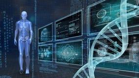 Menselijke anatomie en DNA vector illustratie