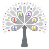 Menselijke boom Stock Foto