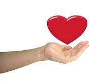 Menselijke damehand die rood hart geïsoleerdr houdt Stock Afbeelding