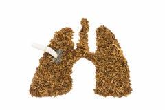 Menselijke die long en kanker door tabak en sigaret wordt gemaakt Royalty-vrije Stock Afbeeldingen