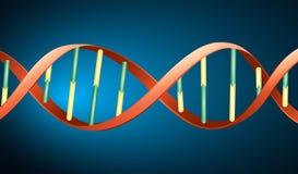 Menselijke DNA Royalty-vrije Stock Foto