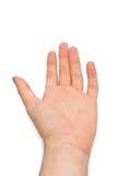 Menselijke geïsoleerdee hand Royalty-vrije Stock Afbeeldingen