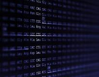 Menselijke genoomopeenvolging Stock Foto's