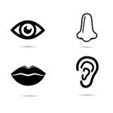 Menselijke gezichtselementen - pictogramreeks Stock Afbeelding