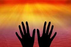 Menselijke hand Stock Foto