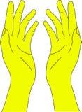 Menselijke Hand Stock Afbeelding