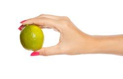 Menselijke hand die groene kalk houdt stock foto