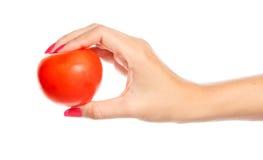 Menselijke hand die rode tomaat houdt Royalty-vrije Stock Afbeelding