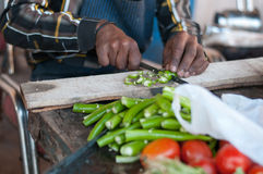 Menselijke handen die groenten in keuken koken Royalty-vrije Stock Foto