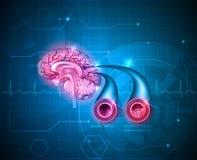 Menselijke hersenen healt zorg royalty-vrije illustratie