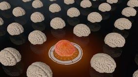 Menselijke hersenen Medische concepten anatomische toekomst royalty-vrije illustratie