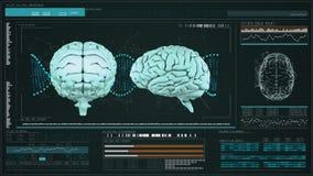 Menselijke hersenen met gegevensanalyse stock illustratie