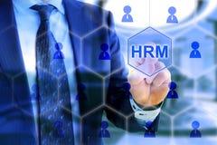 Menselijke het net van het bedrijfs middelbeheer hexagon deskundige Stock Foto