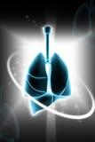 Menselijke longen Royalty-vrije Stock Afbeeldingen