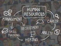 Menselijke Middelwerkgelegenheid Job Recruitment Profession Concept Royalty-vrije Stock Foto's