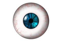 Menselijke oogappel met turkooise iris Royalty-vrije Stock Foto's