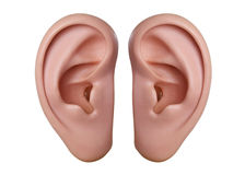 Menselijke oren Stock Afbeeldingen