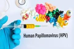 Menselijke papillomavirus (HPV) royalty-vrije stock foto's