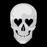 Menselijke schedel Royalty-vrije Stock Foto