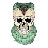 Menselijke schedel ineengestrengelde slang vector voorkant Stock Afbeelding