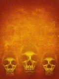 Menselijke schedel in kap op donkeroranje achtergrond De banner van Halloween Royalty-vrije Stock Foto