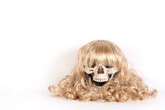 Menselijke schedel met blond haar stock afbeelding
