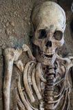Menselijke schedel met donkere achtergrond Concept dood, verschrikking en anatomie Griezelig Halloween-symbool Royalty-vrije Stock Afbeeldingen