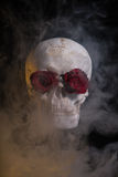 Menselijke schedel met rode die rozen met rook worden behandeld Royalty-vrije Stock Foto's