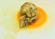 Menselijke Schedel van het stilleven de Abstracte Concept op ei Royalty-vrije Stock Foto's