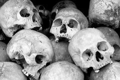 Menselijke schedels Royalty-vrije Stock Afbeeldingen
