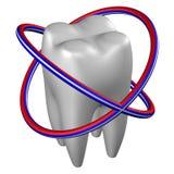 Menselijke tand het 3d teruggeven Stock Foto