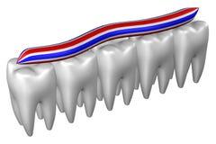 Menselijke tanden het 3d teruggeven Royalty-vrije Stock Foto