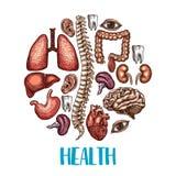 Menselijke vector de schetsaffiche van de organengezondheid Stock Afbeeldingen
