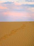 Menselijke voetafdrukken op het zand Royalty-vrije Stock Afbeeldingen