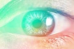 Menselijke Vrouwelijke oogmacro Close-up van vrouwelijke grijs wordt - het blauwe kleur Lichte stemmen geschoten die Stock Afbeelding