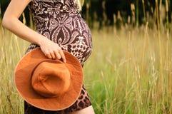 Menselijke Zwangerschap Royalty-vrije Stock Foto