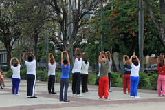 Mensen belast met gezonde gymnastiek in Havana Stock Foto