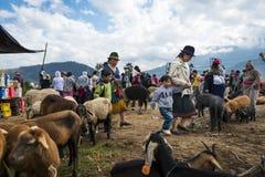 Mensen bij de veemarkt van de stad van Otavalo in Ecuador Stock Afbeeldingen