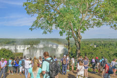 Mensen bij Iguazu-Park in Brazilië Stock Fotografie