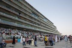 De Renbaan van Meydan Royalty-vrije Stock Foto's