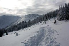 Mensen in de bergen royalty-vrije stock foto's