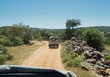 Mensen in de jeep Royalty-vrije Stock Afbeeldingen